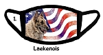Laekenois Patriotic face mask